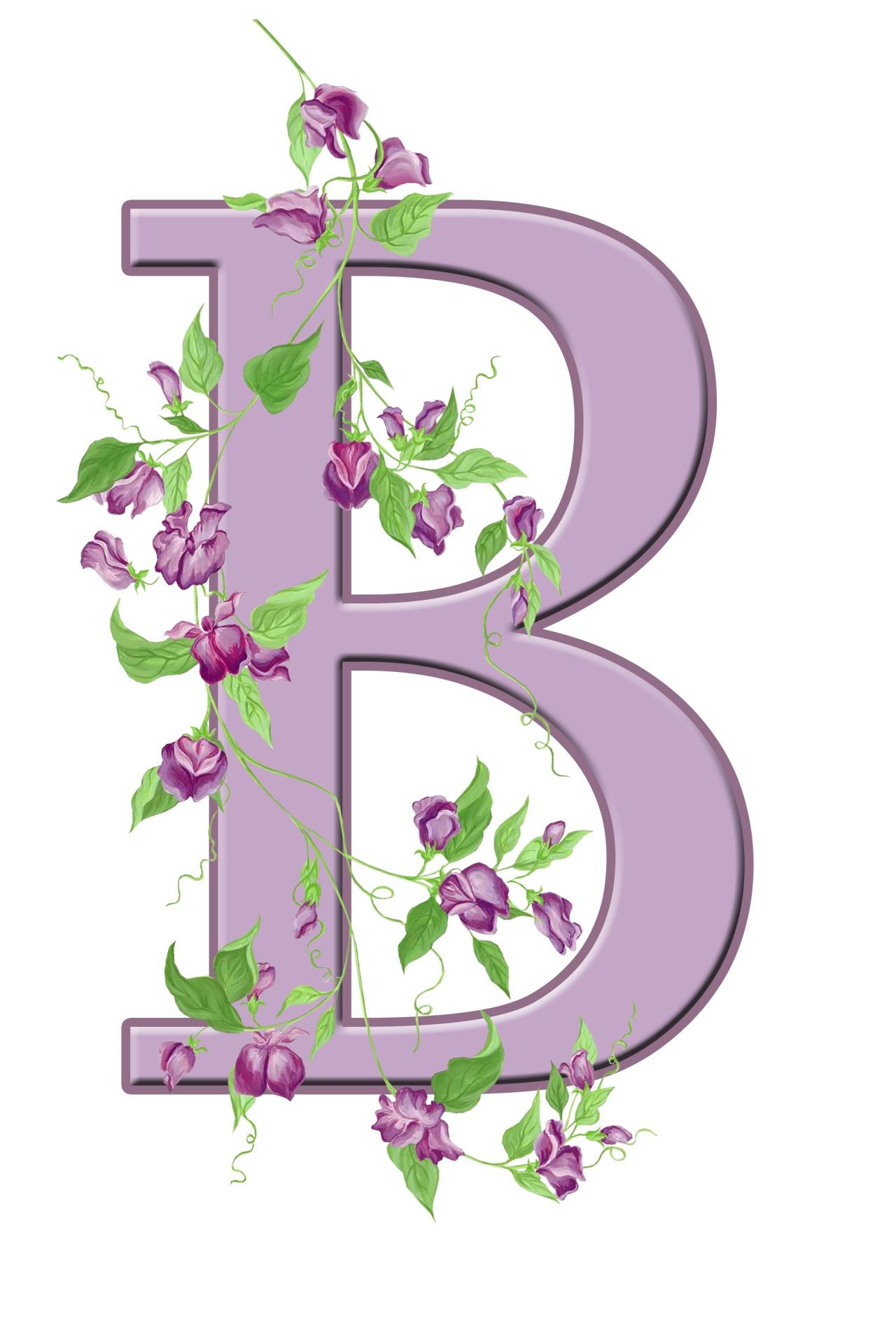 B letter monogram free picture