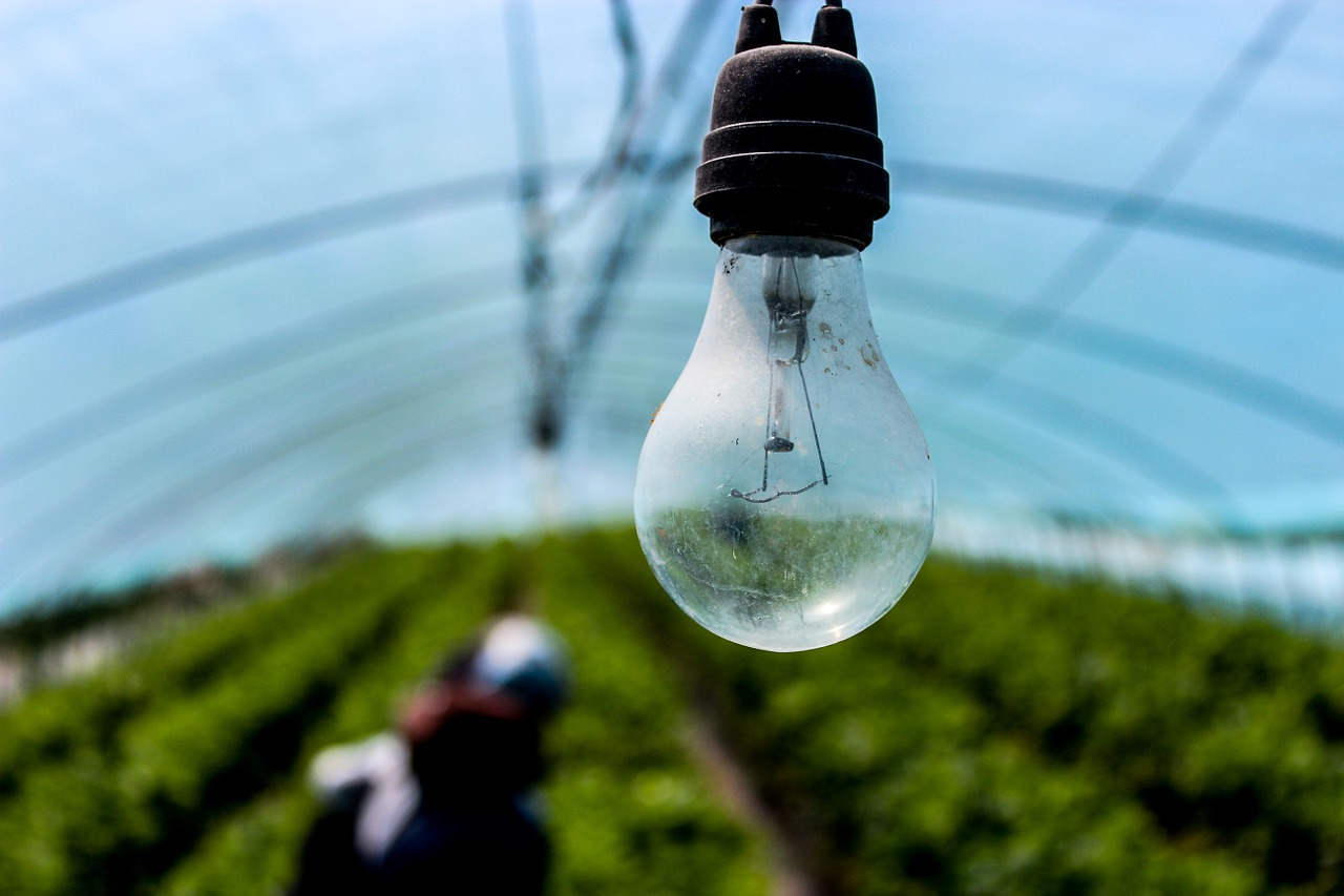 light bulb incandescent electric free photo