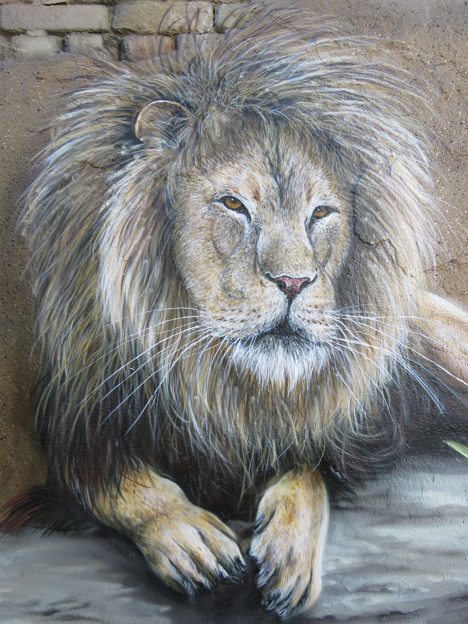 lion wall art wall free photo