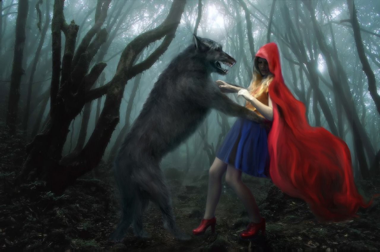 Little Red Riding Hood Wolf Forest Story Girl Free Image From