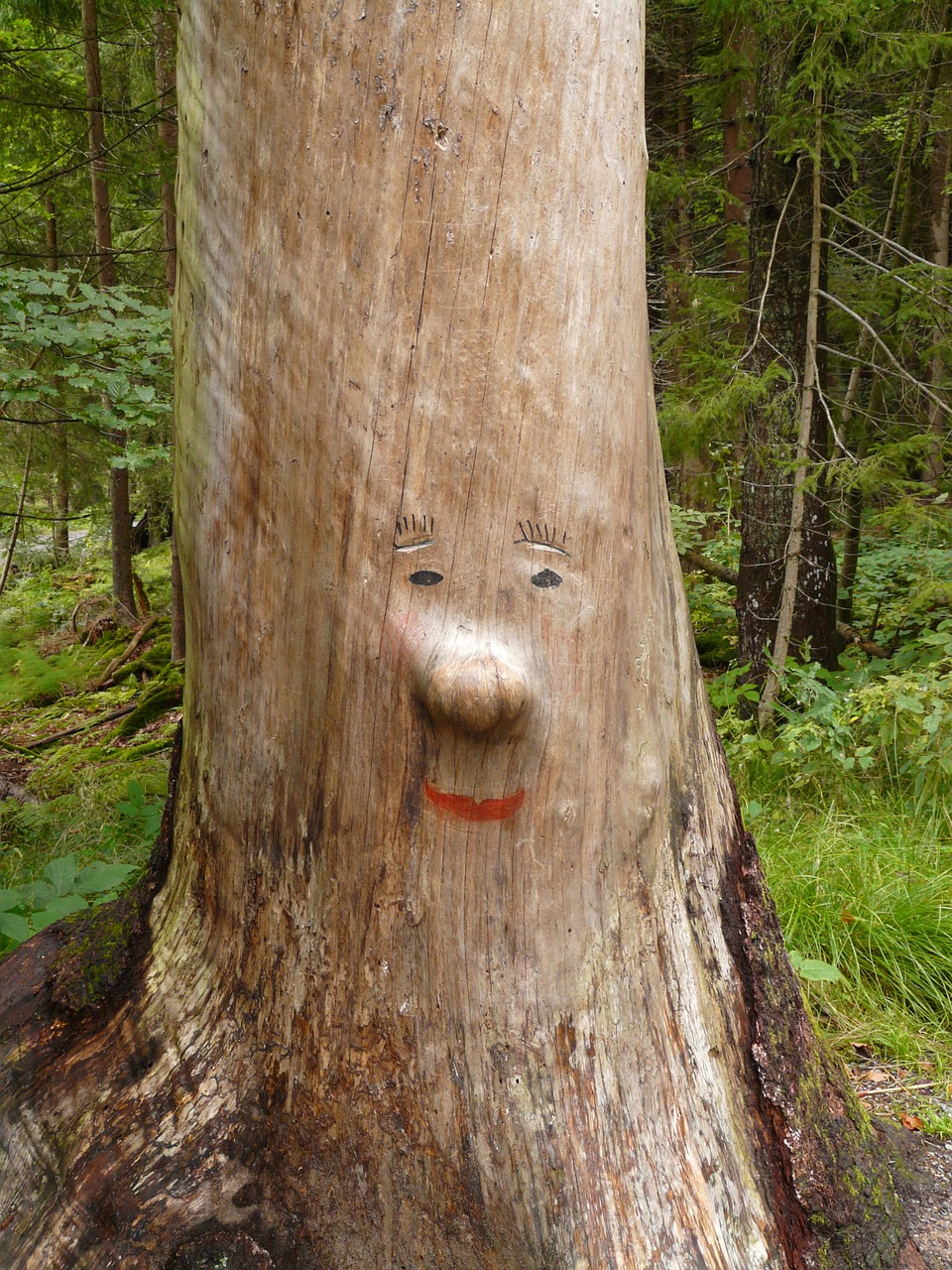 log face carving free photo
