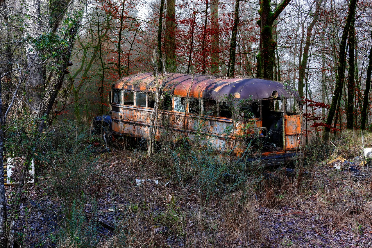 lost places, old bus, ruin, bus, weathered, empty, school bus, mood, abandoned,free pictures, free photos, free images, royalty free, free illustrations, public domain