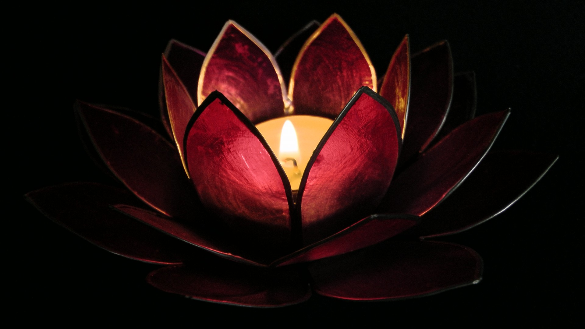 Lotus Flowerlotusflowerflowerscandle Free Photo From Needpix