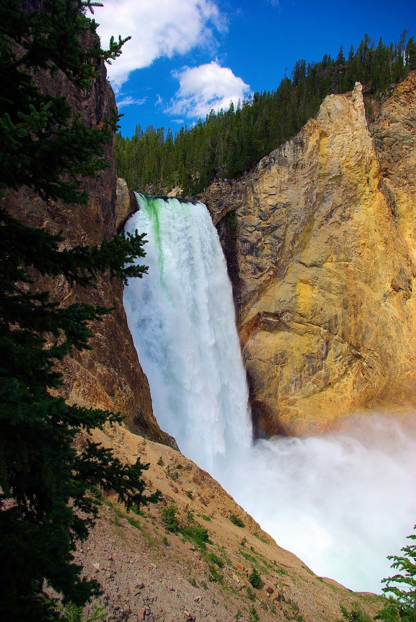 lower falls of the yellowstone  yellowstone  falls free photo