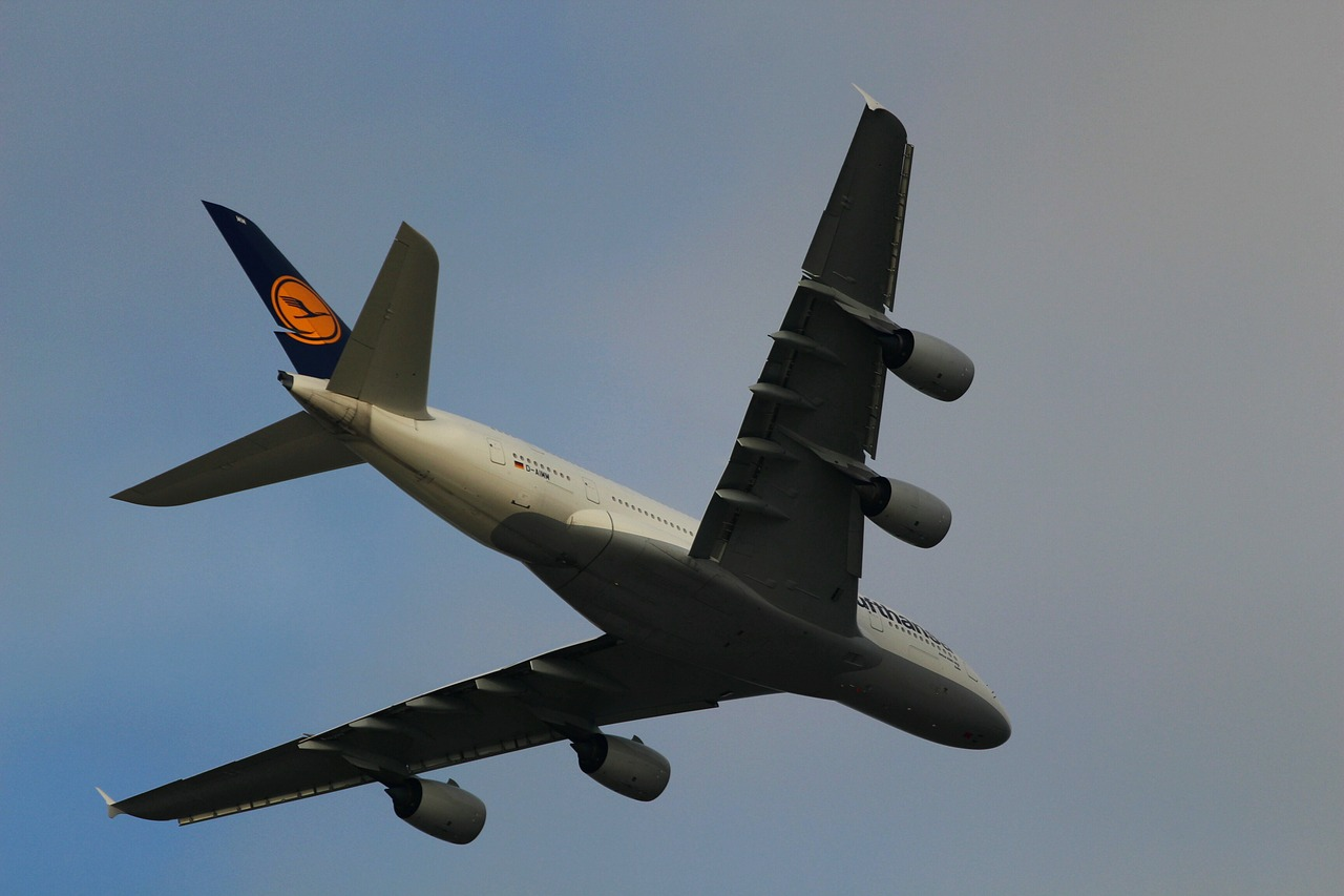 lufthansa  aircraft  travel free photo