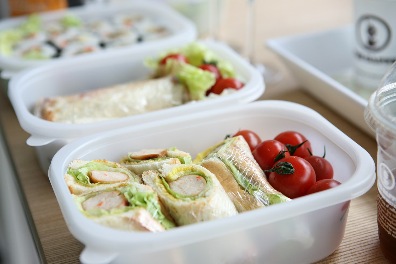 lunch box picnic sandwich free photo