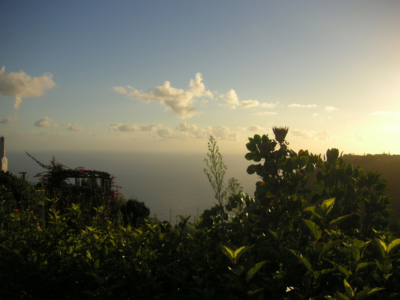 madeira sunrise ocean free photo