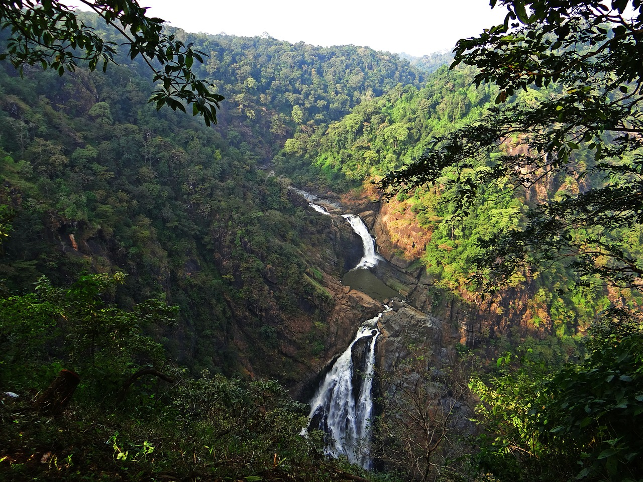 magod falls western ghats water fall free photo