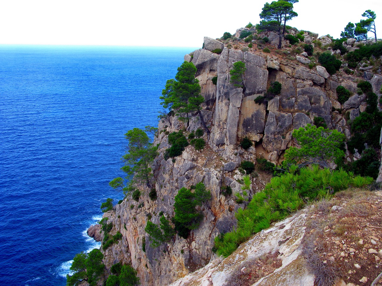 mallorca sierra tramuntana coast free photo