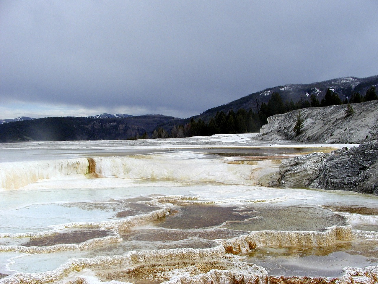 mammoth hot springs free photo