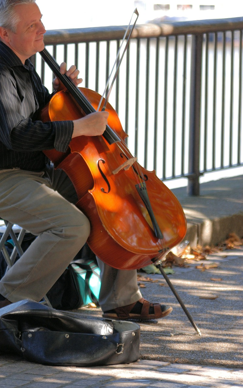 man cello musical free photo