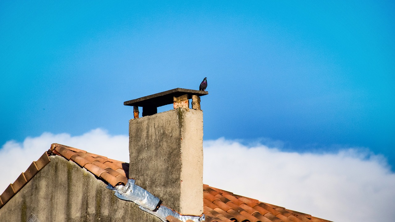 manosque  pigeon  chimney stack free photo