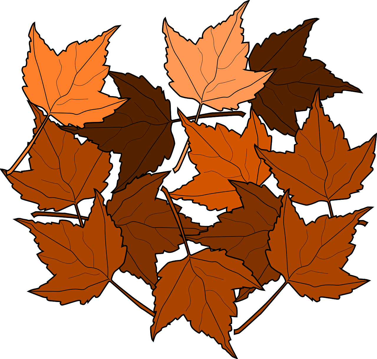 maple,fall,leaves,nature,autumn,foliage,greenery,brown,free vector graphics,free pictures, free photos, free images, royalty free, free illustrations
