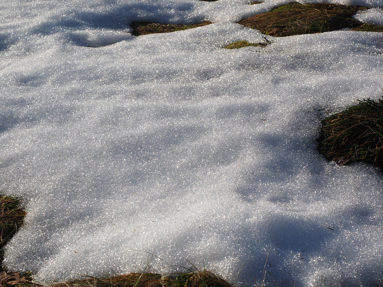 meadow snow snow melt free photo