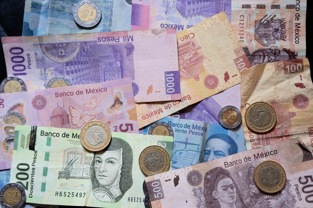 Image result for mexican pesos