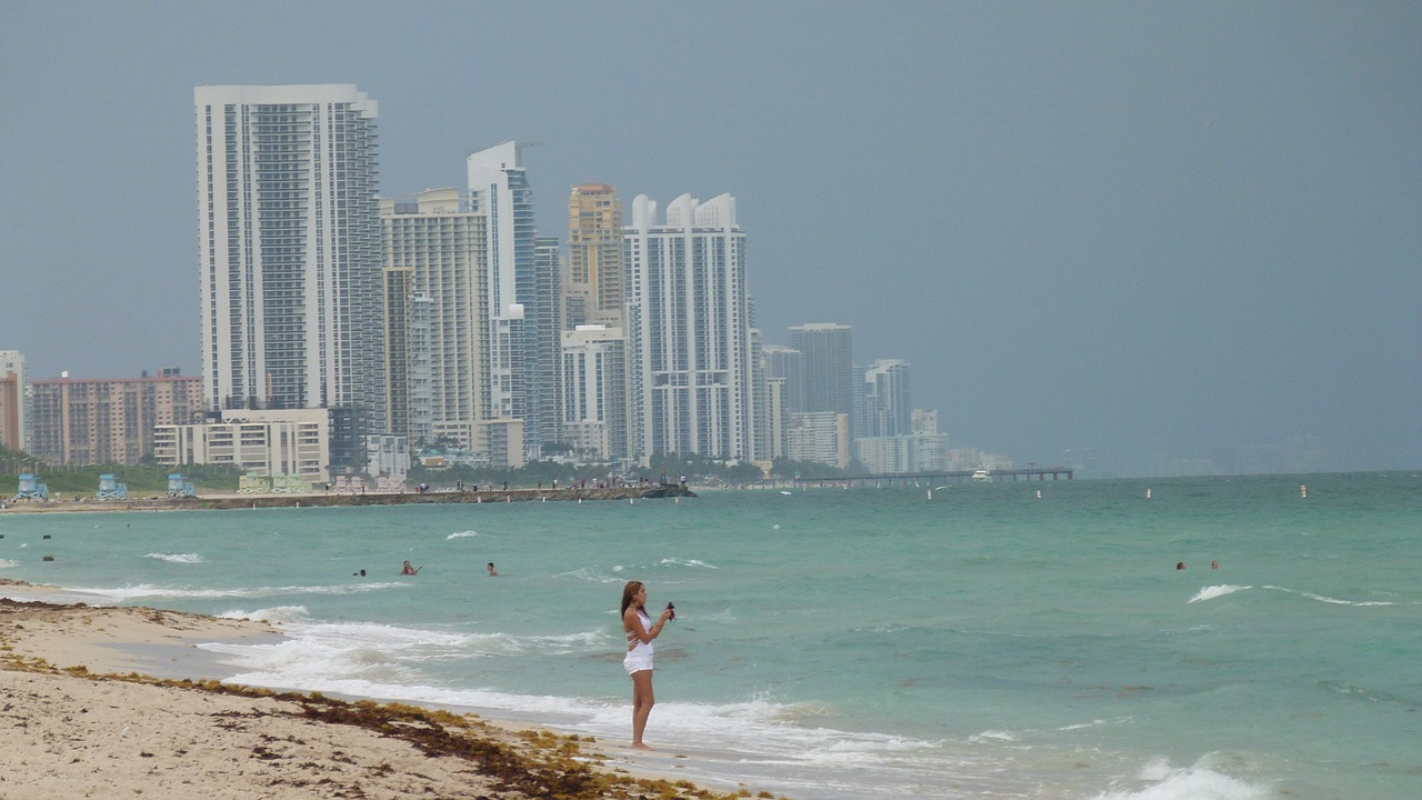 miami miami beach skyline free photo