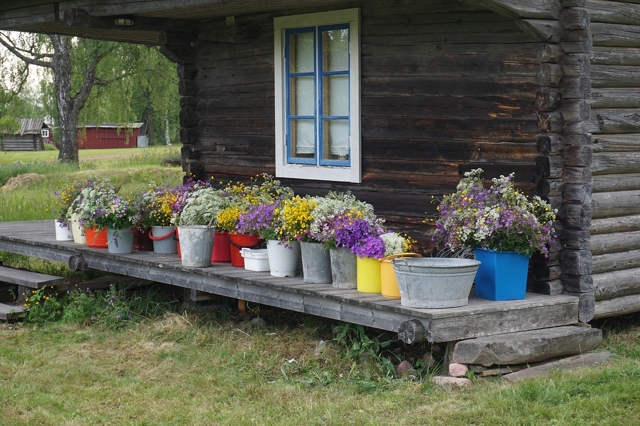 Midsummer Flowers Midsommarblommor Free Pictures Free Photos