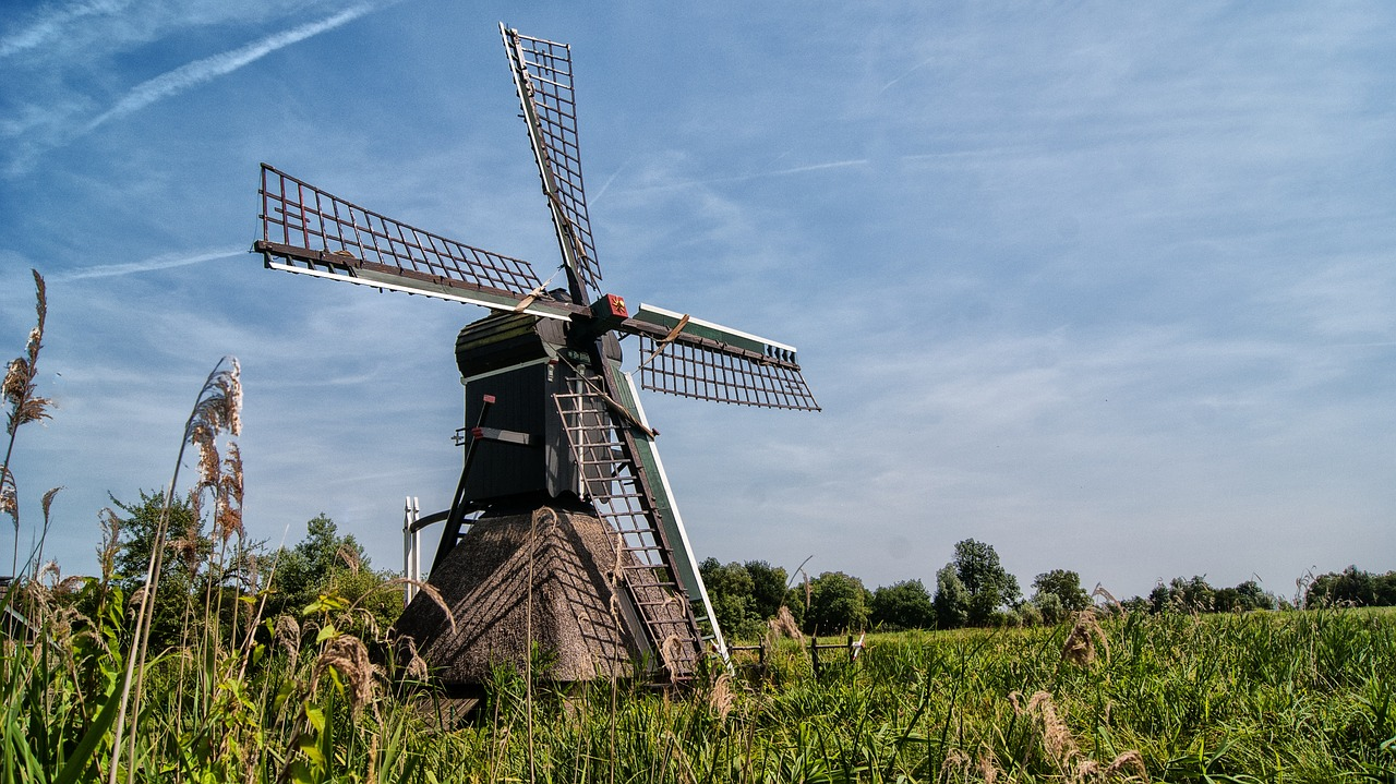mill,wicks,wind mill,historic building,dutch mill,wood,wooden wicks,spider mill,free pictures, free photos, free images, royalty free, free illustrations, public domain