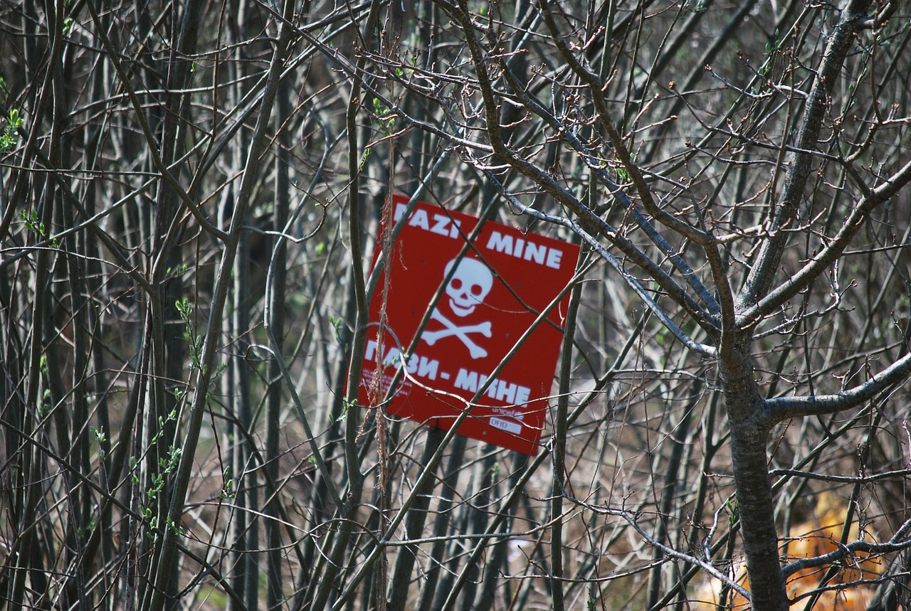 minefield,mine,bosnia,mine labeling,land mine,land mines,warnschild,fatal,lock,free pictures, free photos, free images, royalty free, free illustrations, public domain