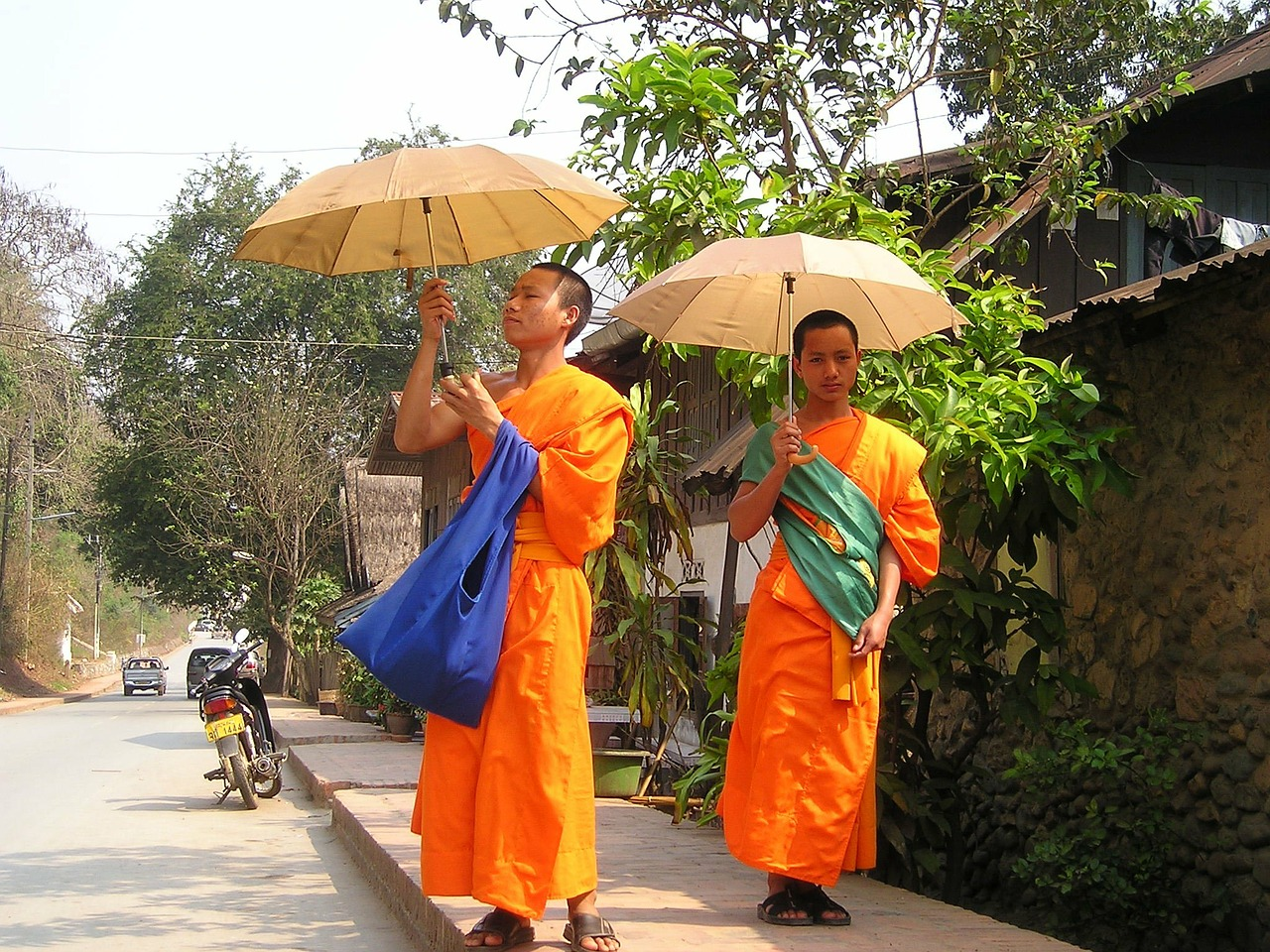 monks buddhists orange free photo