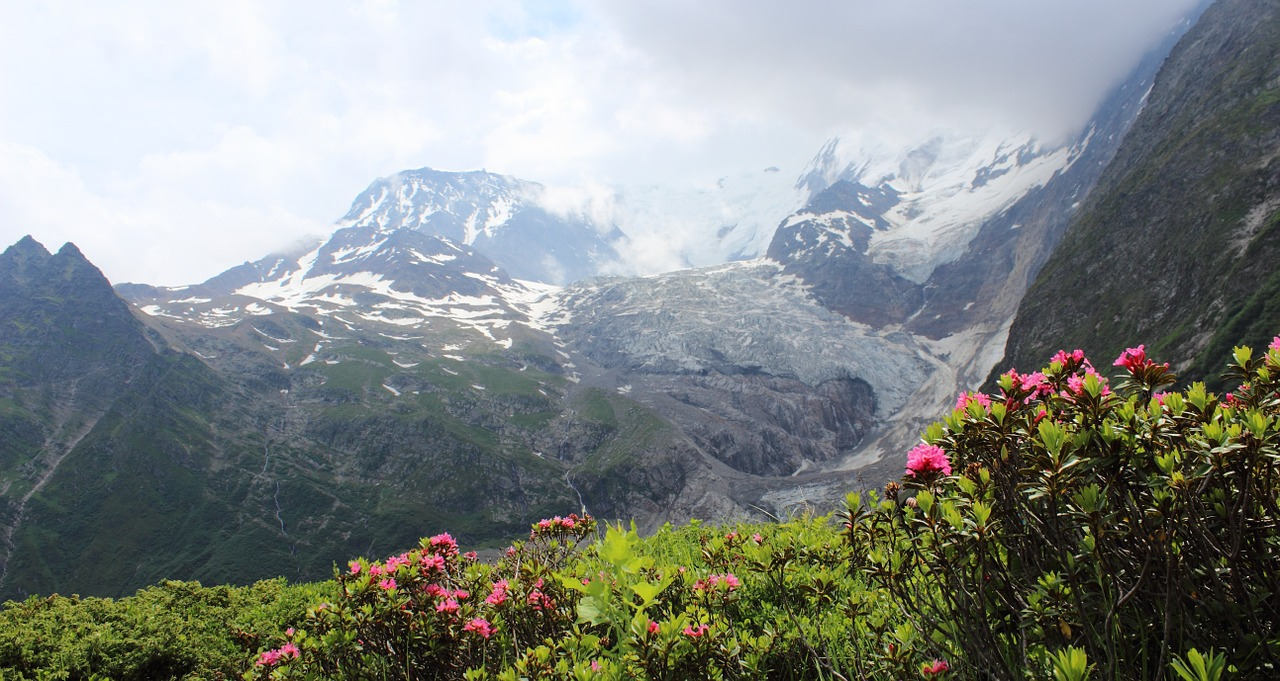 mont blanc tour mont blanc alps free photo