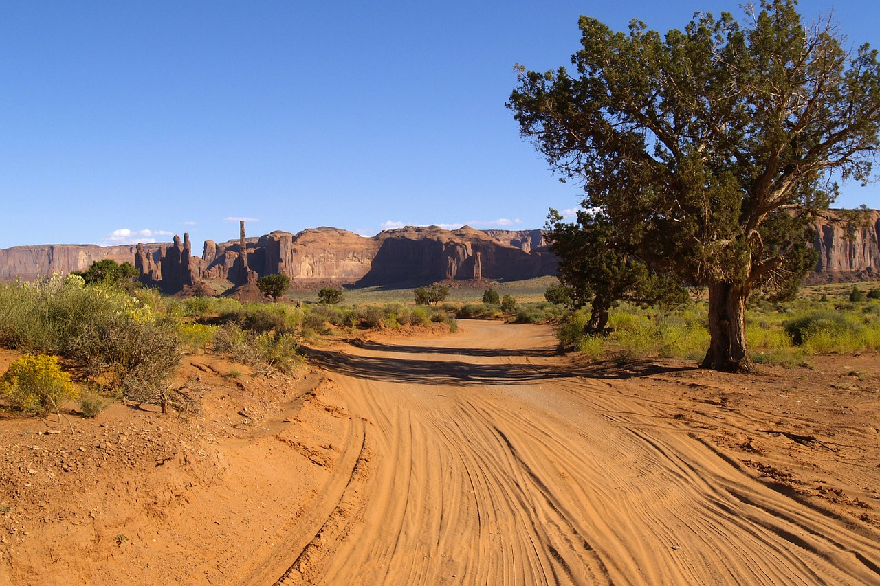 monument valley dusty road tree free photo