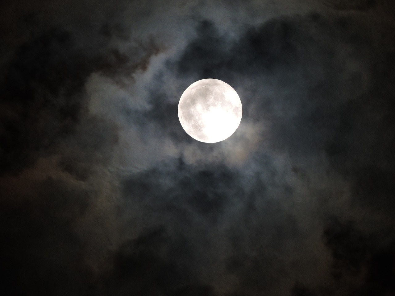 moonlight moon spooky free photo