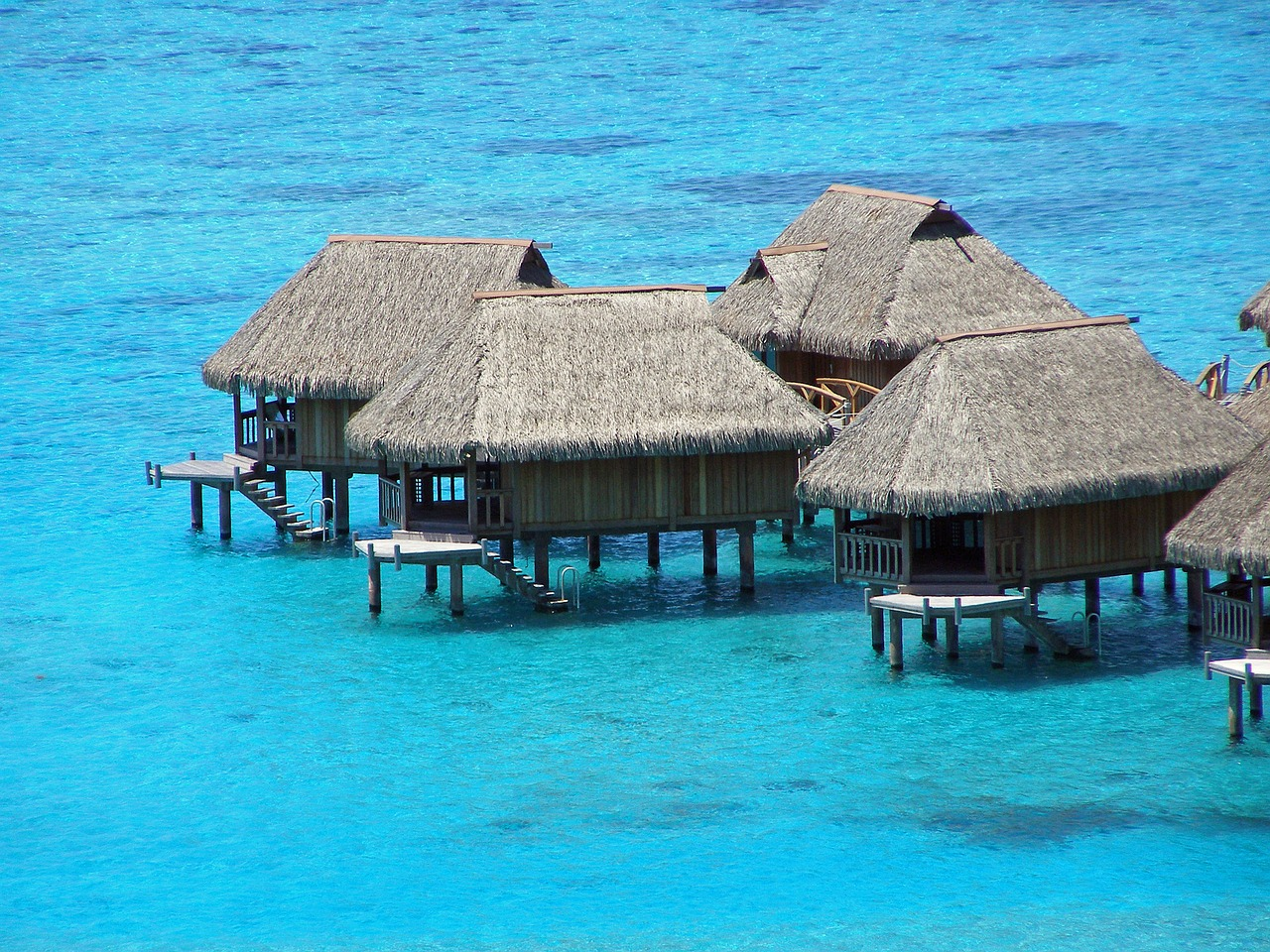 moorea french polynesia free photo
