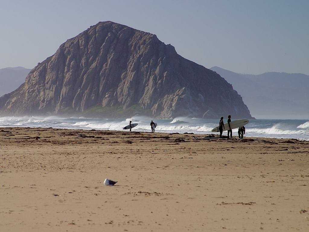 morro rock surfer sea free photo