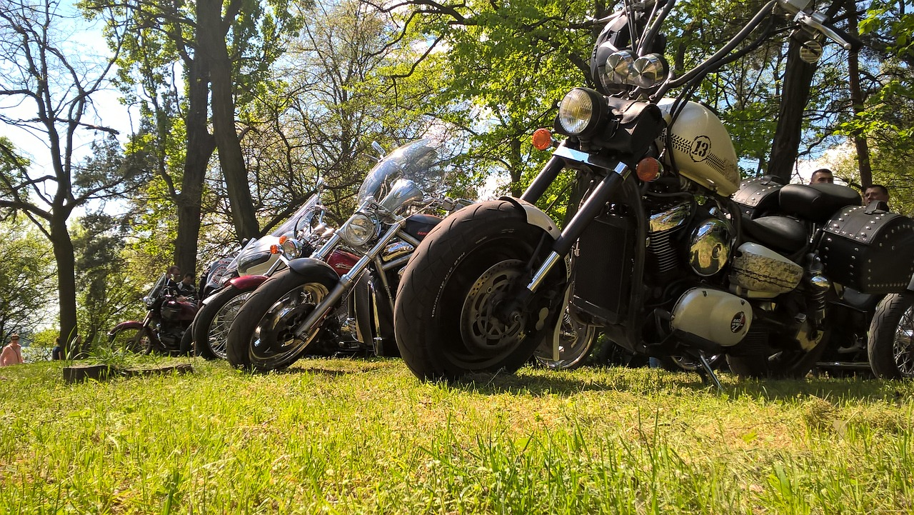 motorcycle harley meetup free photo