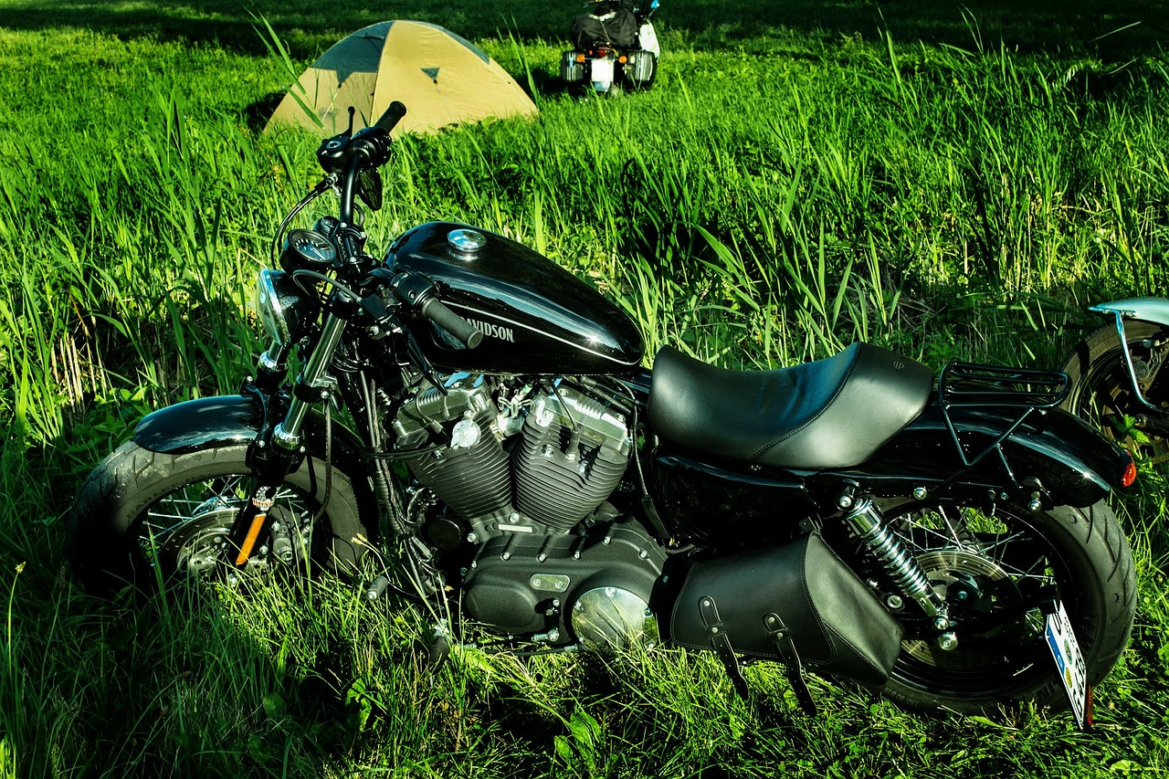 motorcycle motor harley free photo