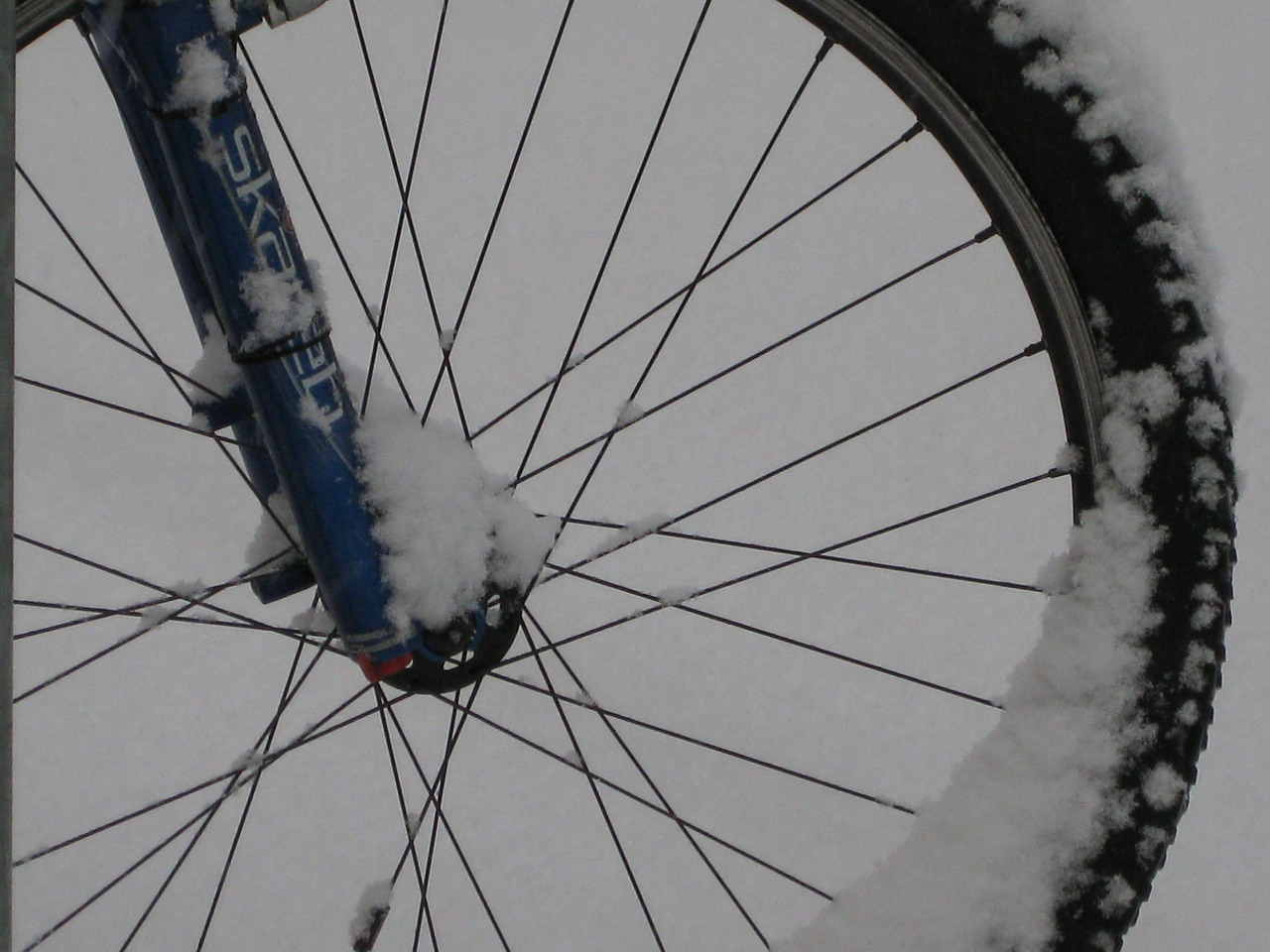 mountain bike bike wheel free photo