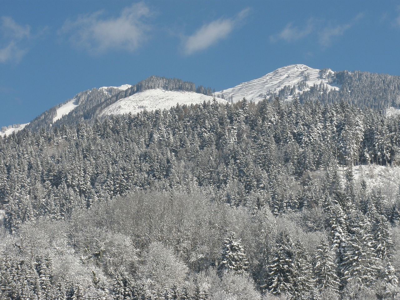 mountains winter wintry free photo