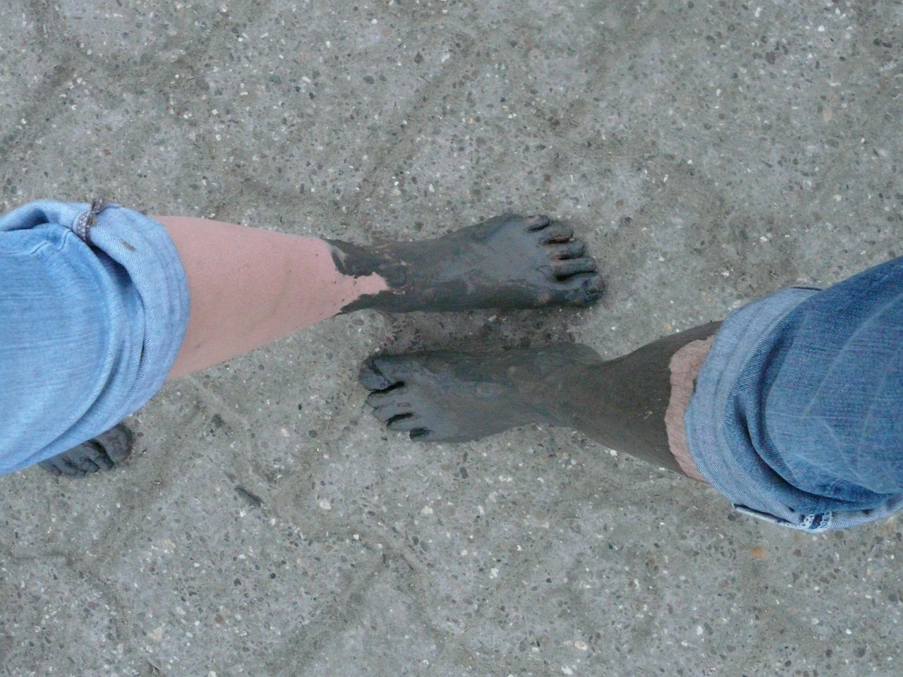 mudflat hiking watts wadden sea free photo