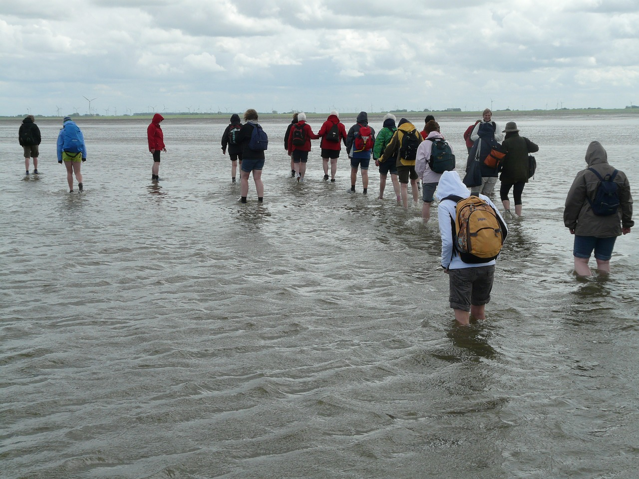 mudflat hiking priel hike free photo