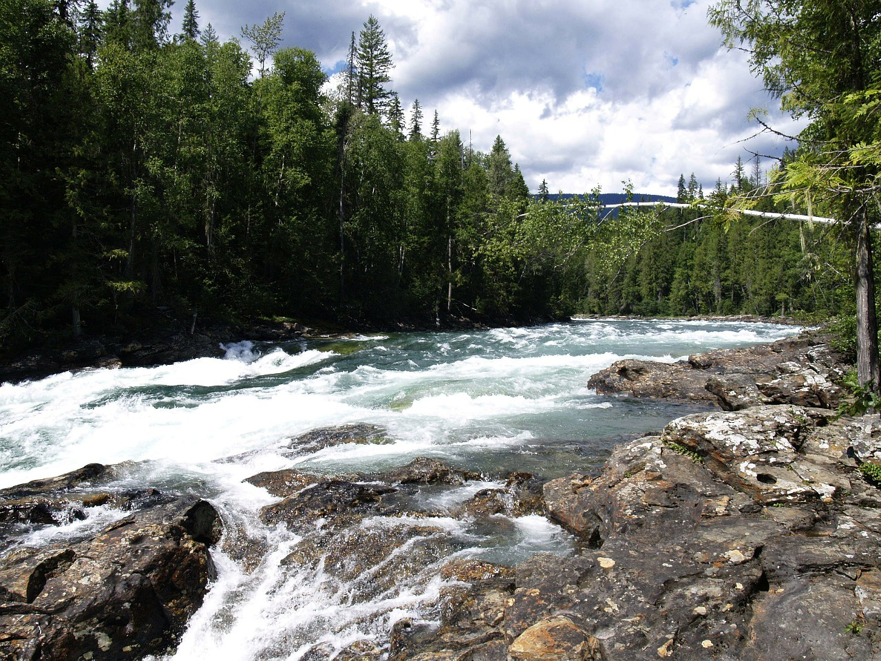 murtle river wells gray provincial park british columbia free photo