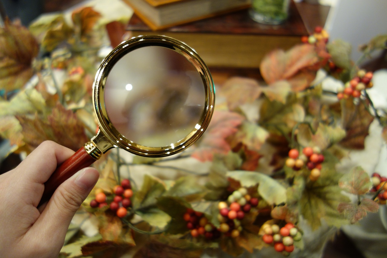 mystery magnifying glass autumn free photo