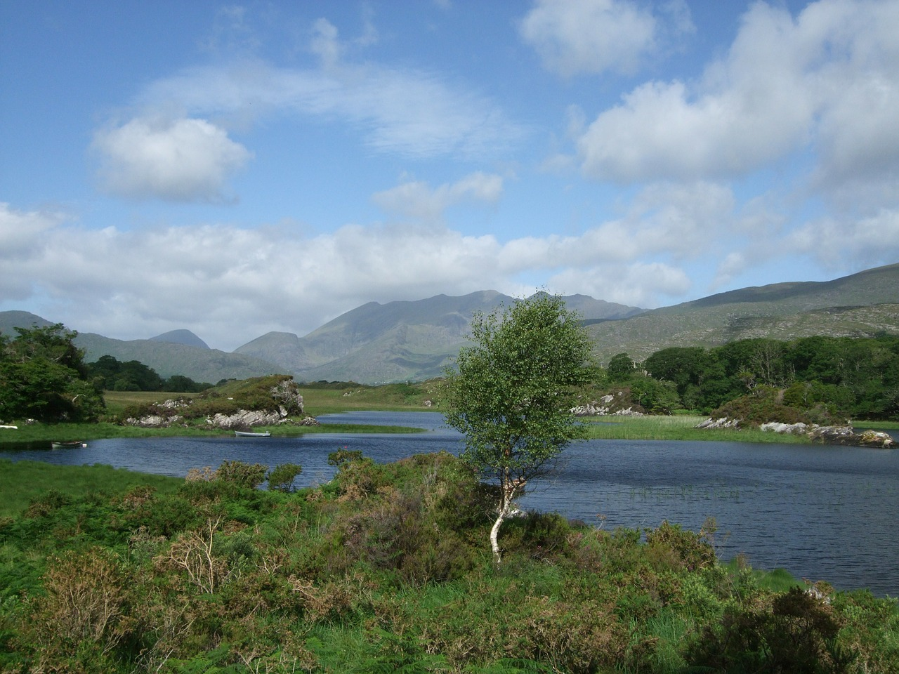 national park killarney irish free photo