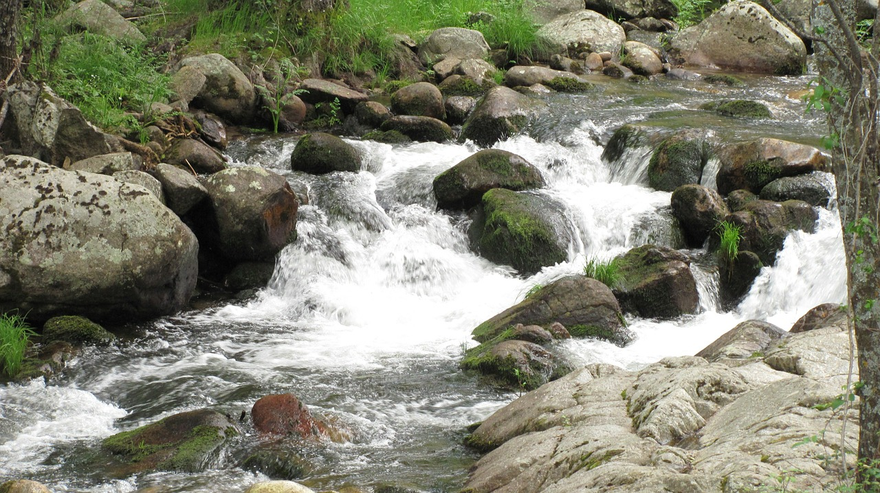 nature water rocks free photo