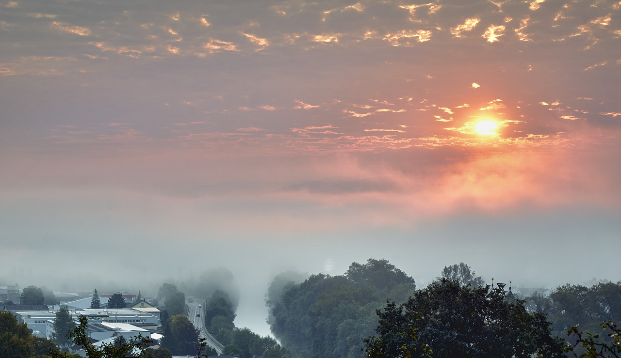 neckar fog sunrise free photo