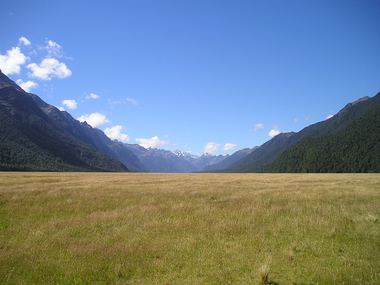 new zealand reported mountains free photo
