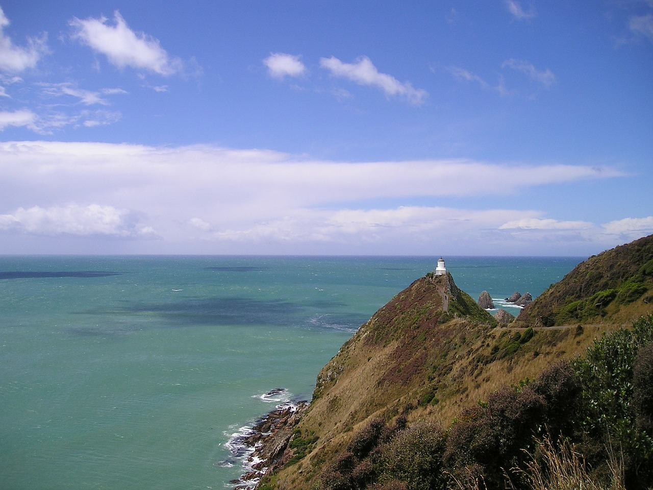 new zealand lighthouse sea free photo
