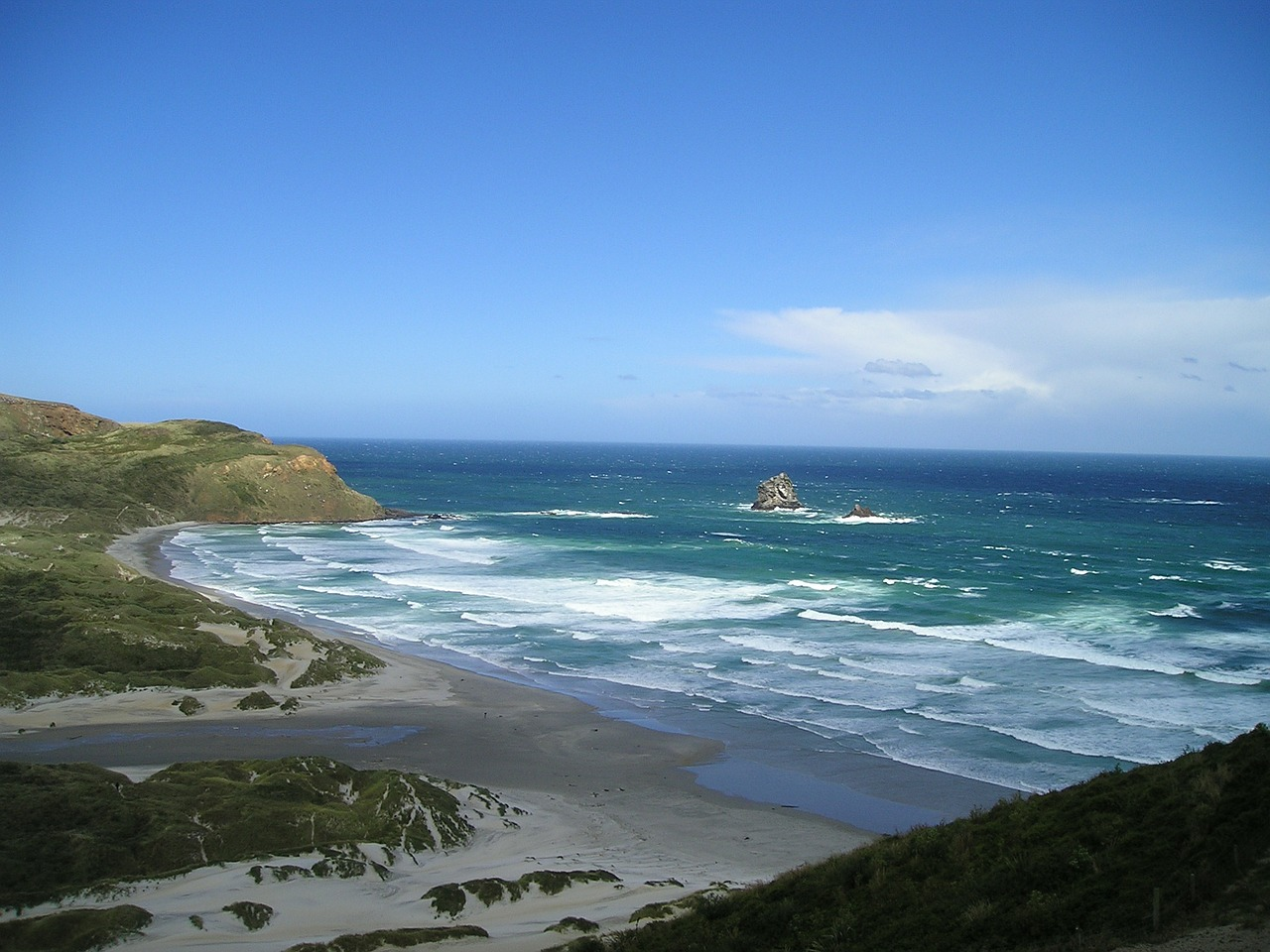 new zealand sea nature free picture