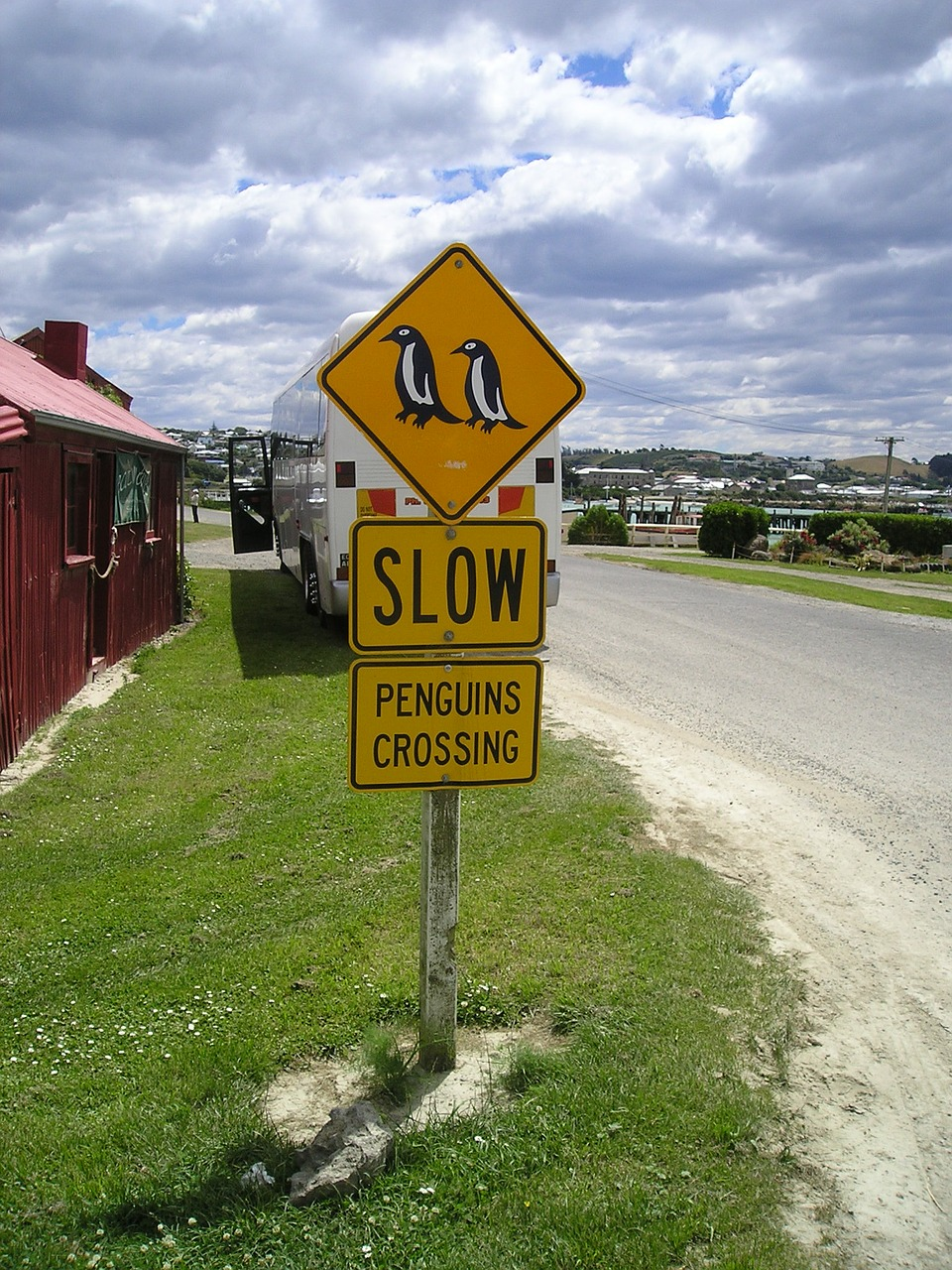 new zealand penguins traffic sign free photo