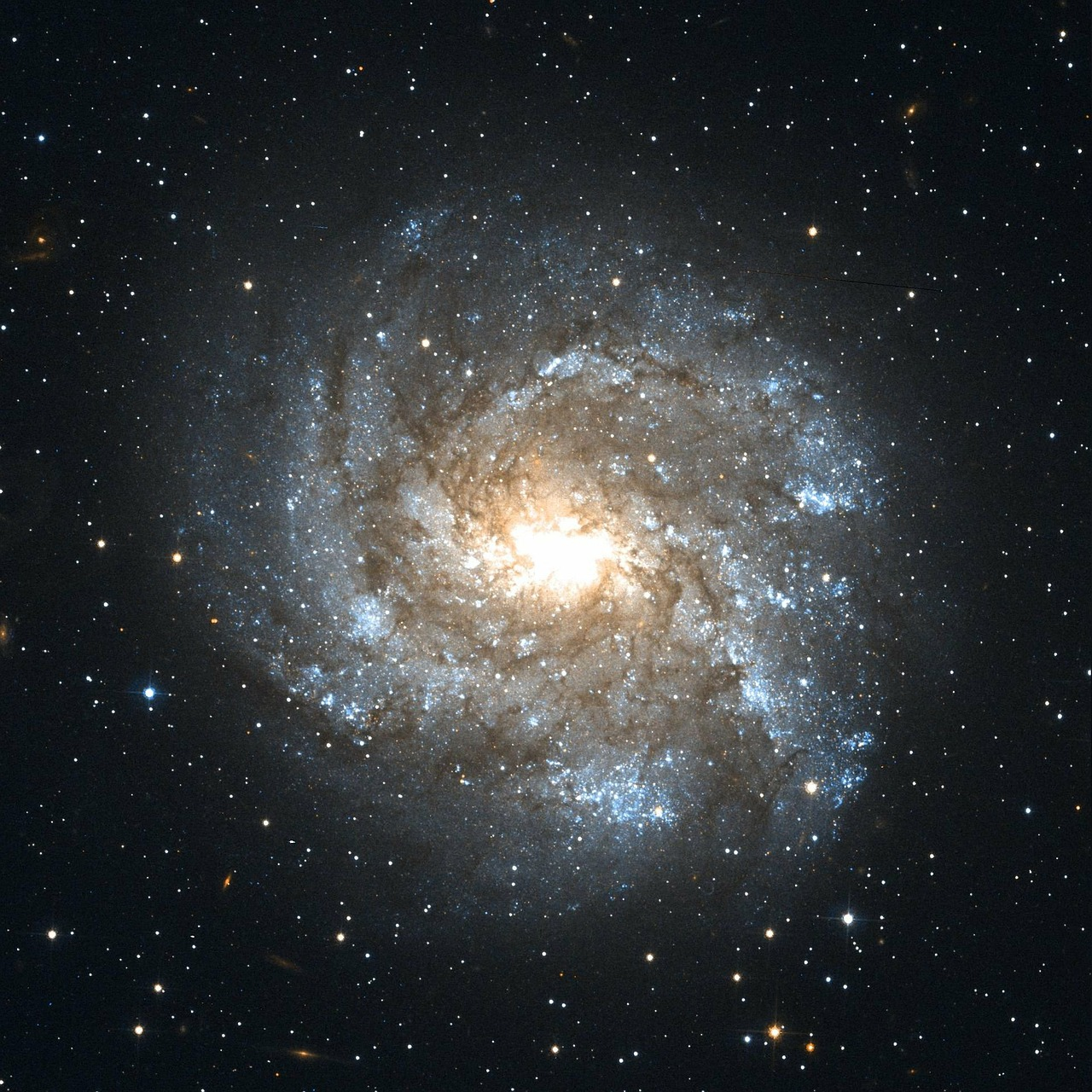 ngc 2082 barred spiral galaxy constellation schwertfisch free photo