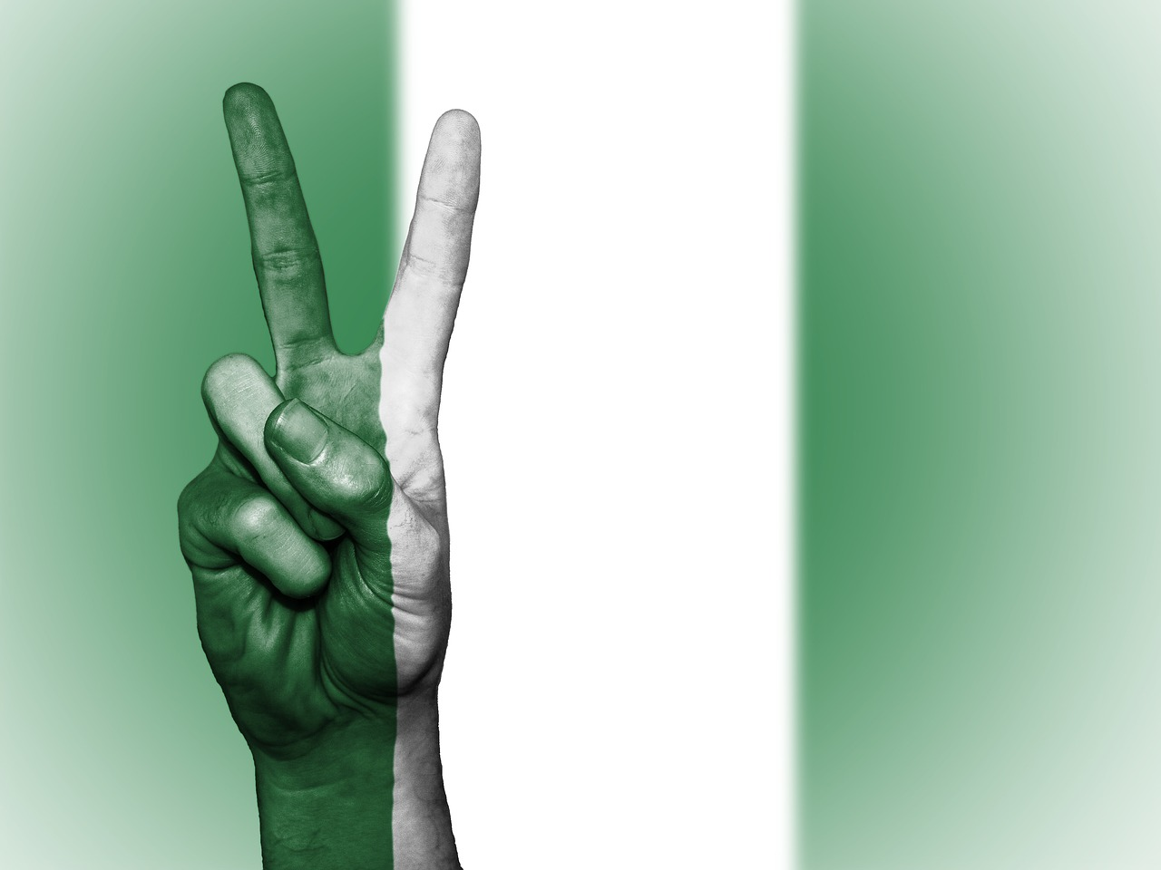 nigeria peace hand free photo