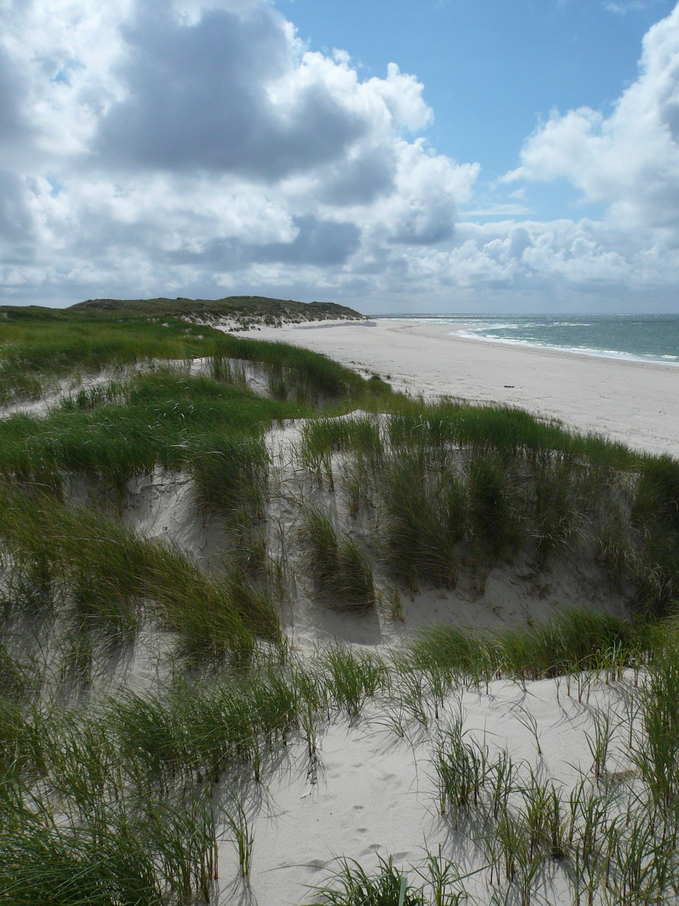 north sea dunes sylt free photo