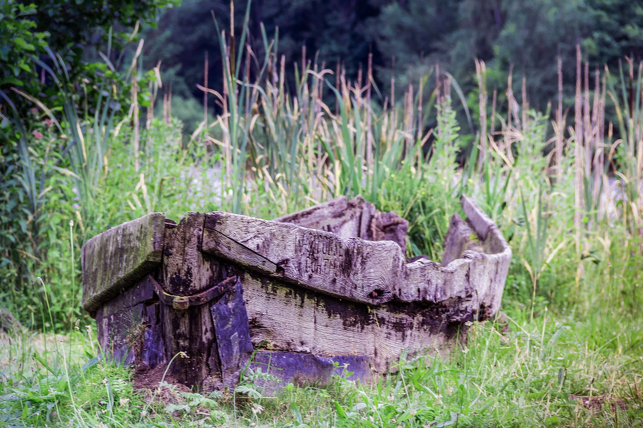old boat rotten boat rowing boat free photo