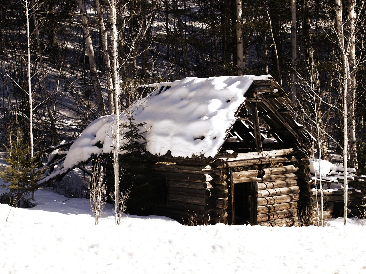 old log cabin,winter,snow,nature,log,cabin,house,cottage,rustic,country,architecture,christmas,outdoor,countryside,timber,living,village,outdoors,scenic,frozen,free pictures, free photos, free images, royalty free, free illustrations, public domain