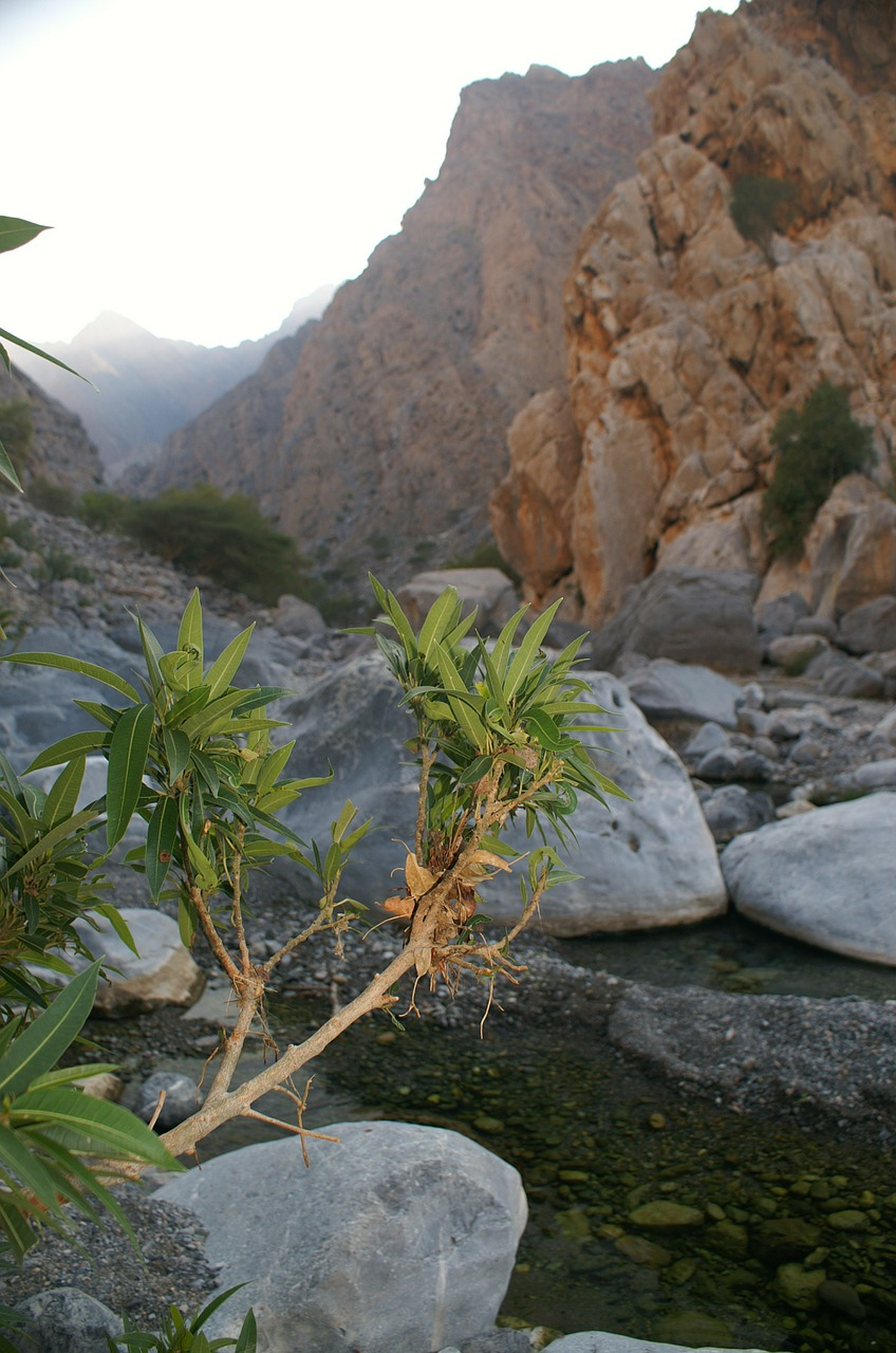 oman wadi mountains free photo